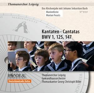 Kantaten zum Kirchenjahr: Marienfeste, BWV 5 & 125 & 147